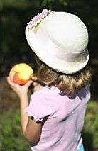 [Eat a Peach]